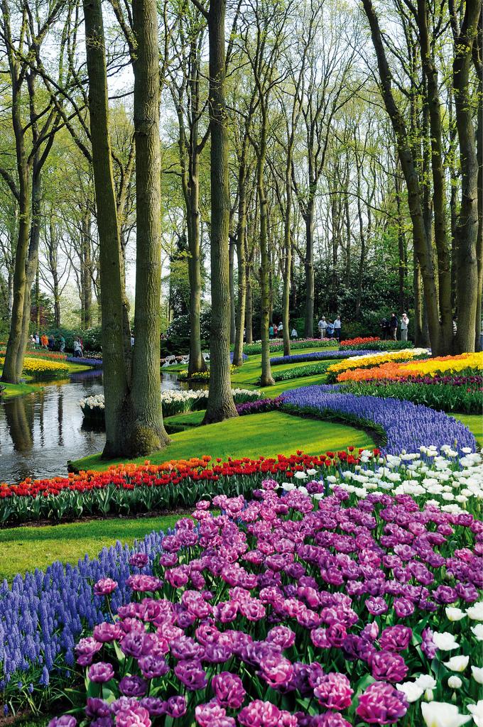 Keukenhof Gardens, Credit: VisitKeukenhof